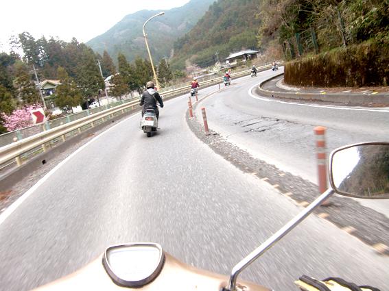 curry_speed_club_rabbit_0357.JPG